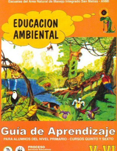 10. Guia de aprendizaje V-VI 2000