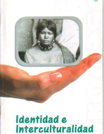 13.1. Identidad e Interculturalidad 2002