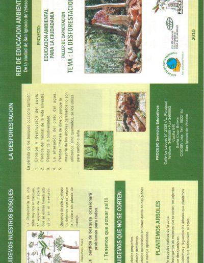 33. Triptico Deforestación anverso 2010