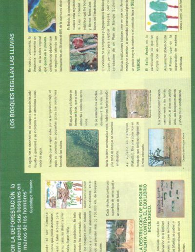 33. Triptico Deforestación reverso 2010