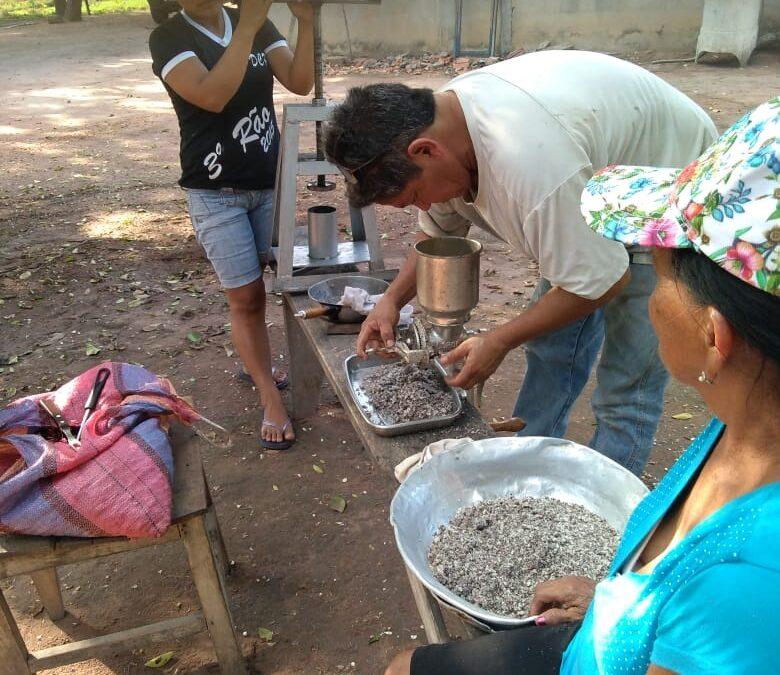 MUNICIPIO SAN MATÍAS: COMUNIDAD SAN MANUEL APROVECHA EL TOTAI PARA EXTRAER ACEITE